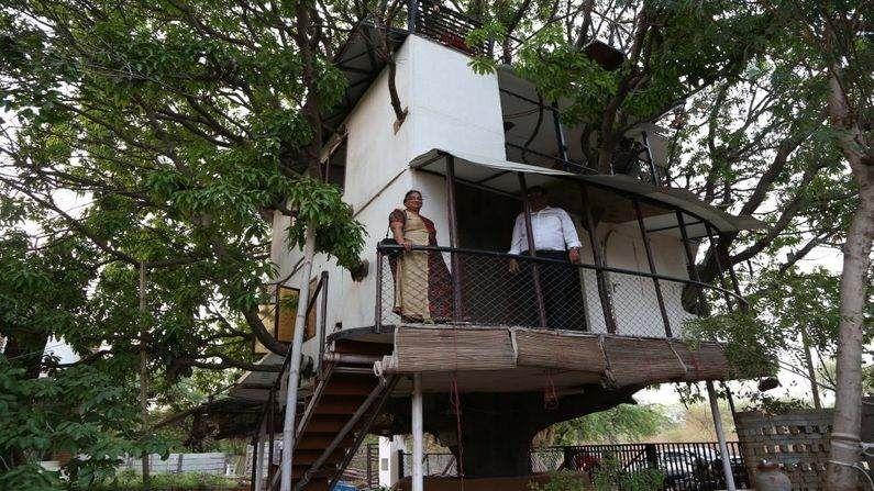 રાજસ્થાનના ઉદયપુર (Udaypur) માં રહેતા પ્રકૃતિપ્રેમી એવા એન્જિનિયર કુલદીપસિંહ (કેપી સિંહ) એ આવુ જ કઈક ખાસ પોતના સપનાનું ઘર બનાવ્યું છે. આ ઘરની ખાસ વાત એ છે કે એક આંબાના ઝાડ પર આ ઘર બનવાવવામાં આવ્યું છે અને આ ઘર બનાવતી વખતે આંબાની એક ડાળખી પણ કાપવામાં આવી નથી. જ્યારે સામાન્ય રીતે ઘર બનાવતી વખતે પ્લાનમાં વચ્ચે આવતા વૃક્ષોને કાપી નાંખવામાં આવતા હોય છે.